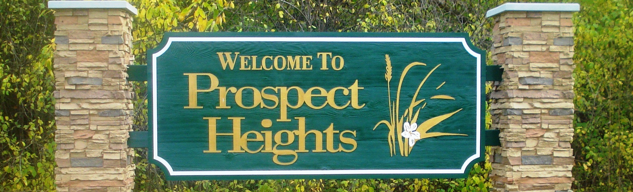 Prospect Heights Limousine Services