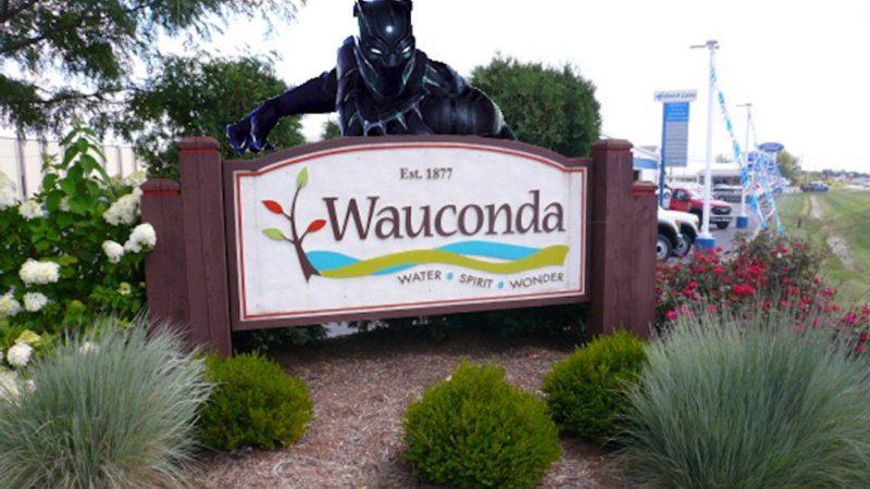 Wauconda Limousine Services