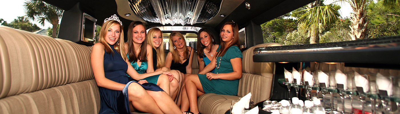 Party Bus, Limo Bus IL, Charter Party Buses, Party Bus Chicago, All American, Coach Bus, Shuttle Bus, Mini Coach, Mercedes Sprinter