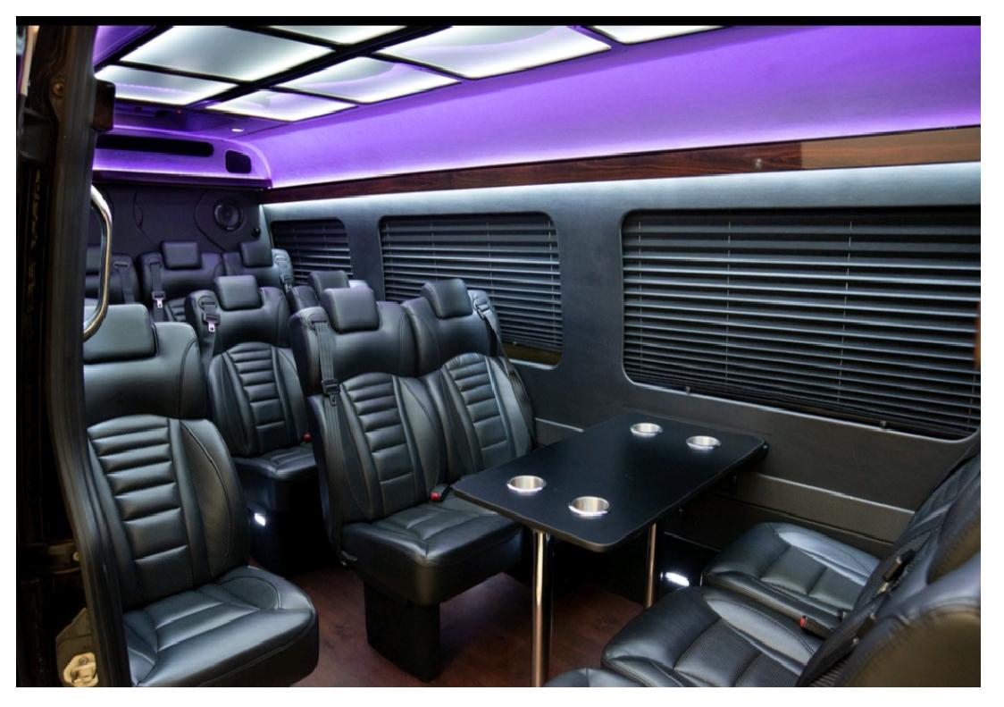 Sprinter VIP Coach, Geneva Limousine Services